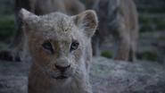 Lionking2019-animationscreencaps.com-5878