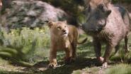 Lionking2019-animationscreencaps.com-6770