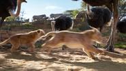Lionking2019-animationscreencaps.com-2450