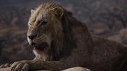 Lionking2019-animationscreencaps.com-7401