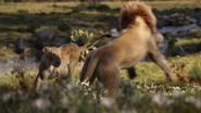 Lionking2019-animationscreencaps.com-9491