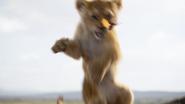 Lionking2019-animationscreencaps.com-1799