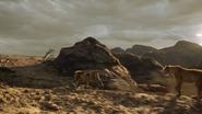 Lionking2019-animationscreencaps.com-10604