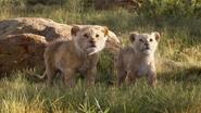 Lionking2019-animationscreencaps.com-2190