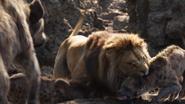 Lionking2019-animationscreencaps.com-3334