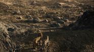 Lionking2019-animationscreencaps.com-10997