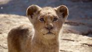 Lionking2019-animationscreencaps.com-4599