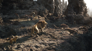 Lionking2019-animationscreencaps.com-3356