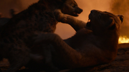 Lionking2019-animationscreencaps.com-11937