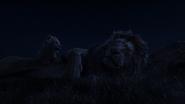 Lionking2019-animationscreencaps.com-3744