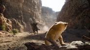 Lionking2019-animationscreencaps.com-5163