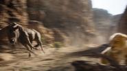 Lionking2019-animationscreencaps.com-5165