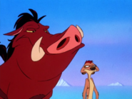 YC Timon & Pumbaa35