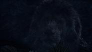 Lionking2019-animationscreencaps.com-10247