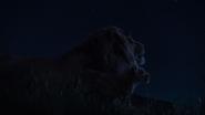 Lionking2019-animationscreencaps.com-3772
