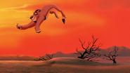 Lion-king2-disneyscreencaps.com-2422