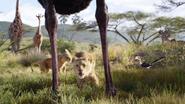 Lionking2019-animationscreencaps.com-2526