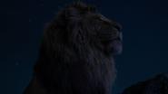 Lionking2019-animationscreencaps.com-3697