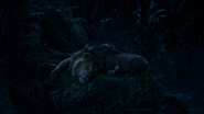 Lionking2019-animationscreencaps.com-8178