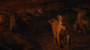 Lionking2019-animationscreencaps.com-11651