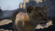 Lionking2019-animationscreencaps.com-2934