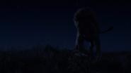 Lionking2019-animationscreencaps.com-3725