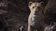 Lionking2019-animationscreencaps.com-7472