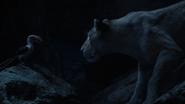 Lionking2019-animationscreencaps.com-7646