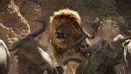 Lionking2019-animationscreencaps.com-4869