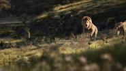 Lionking2019-animationscreencaps.com-9485