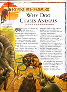 Why Dog Chases Animals