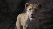 Lionking2019-animationscreencaps.com-7393