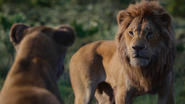 Lionking2019-animationscreencaps.com-9821