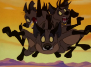 CTAY hyenas35