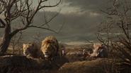 Lionking2019-animationscreencaps.com-10870