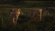 Lionking2019-animationscreencaps.com-3490