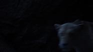 Lionking2019-animationscreencaps.com-7545