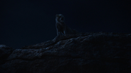 Lionking2019-animationscreencaps.com-7616