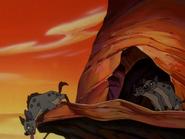 CTAY hyenas5