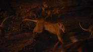 Lionking2019-animationscreencaps.com-11649