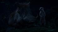 Lionking2019-animationscreencaps.com-8376