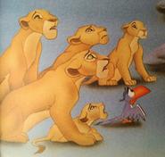 Sarafina and lionesses 1