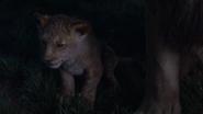 Lionking2019-animationscreencaps.com-3642