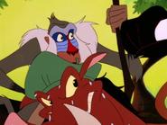 RITJ Pumbaa & Rafiki3