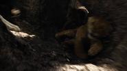 Lionking2019-animationscreencaps.com-3239