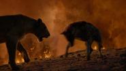 Lionking2019-animationscreencaps.com-11926