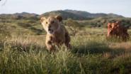Lionking2019-animationscreencaps.com-1652