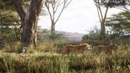Lionking2019-animationscreencaps.com-2293