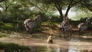 Lionking2019-animationscreencaps.com-6615