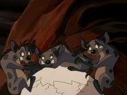 CTAY hyenas29